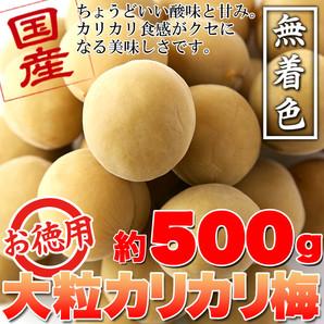 国産豊後梅100%使用。無着色☆お徳用大粒カリカリ梅500g