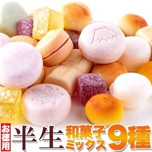 保存料不使用!昔懐かしい美味しさがどっさり!!【お徳用】半生和菓子ミックス9種880g(440g×2袋)