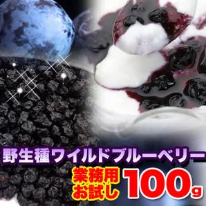 ※2019/1/21販売終了※【お試し】野生種ワイルドブルーベリー100g【メール便可サイズ】≪常温≫