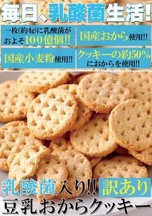 乳酸菌入り【訳あり】豆乳おからクッキー200g