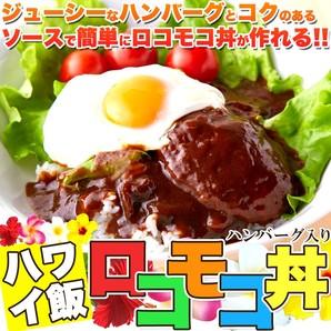 ※2019/3/20販売終了※【ゆうメール出荷】人気のハワイ飯!!ロコモコ丼ハンバーグ入り640g(160g×4袋)