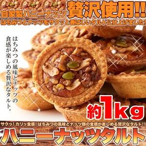 はちみつとナッツの相性抜群!!【訳あり】ハニーナッツタルト1kg